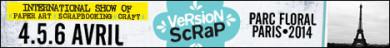 ban-VSParis-FR-468x60.jpg