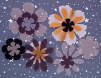 Fleurs exotiques Priplak/pack chocolat