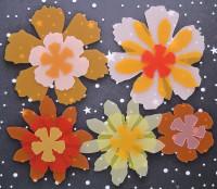 Fleurs exotiques Priplak/pack orange