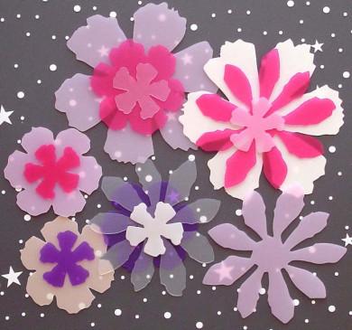 Fleurs exotiques Priplak/pack rose