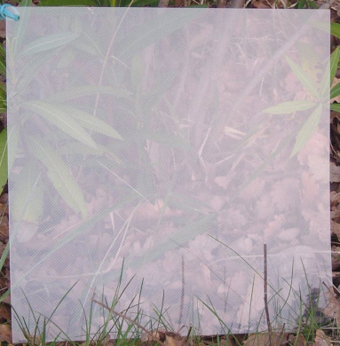 Plaque de Priplak Lines 30 x 30cm
