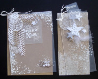 Kit Carterie Noël-Nouvel An Nature